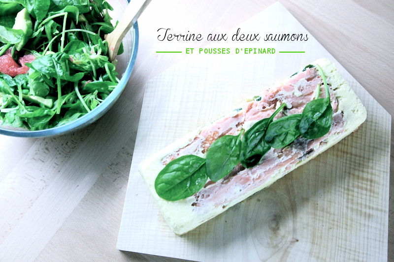 terrinesaumon